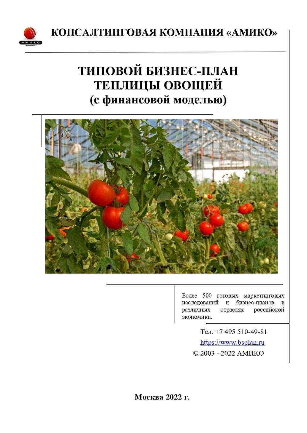 Бизнес по выращиванию овощей - бизнес-план, как начать с нуля 8